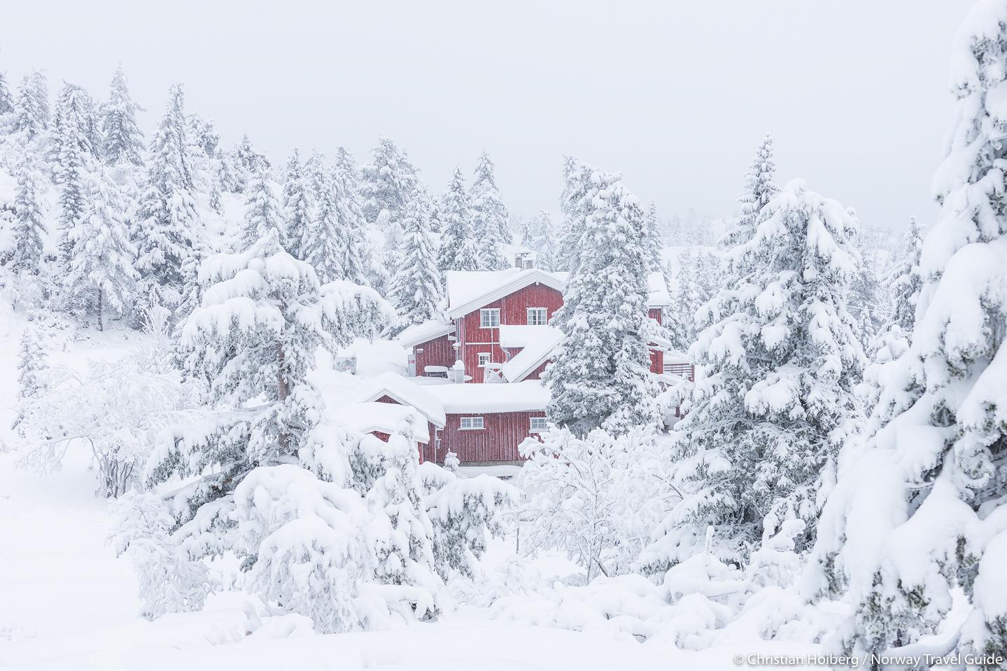 Kongsberg By Escort Date Oslo - Debora, Ålder:[MEMRES-2]